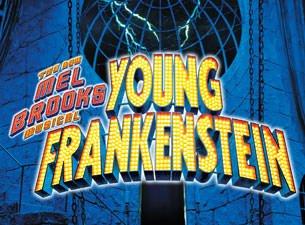 Young Frankenstein - Theatre reviews Young Frankenstein Logo