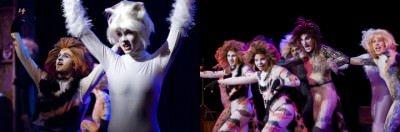 cats at theo ubique cabaret theatre
